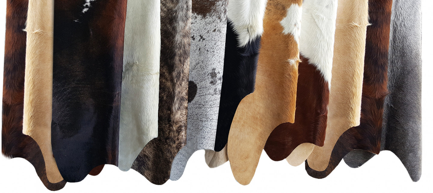 Selection Cowhides